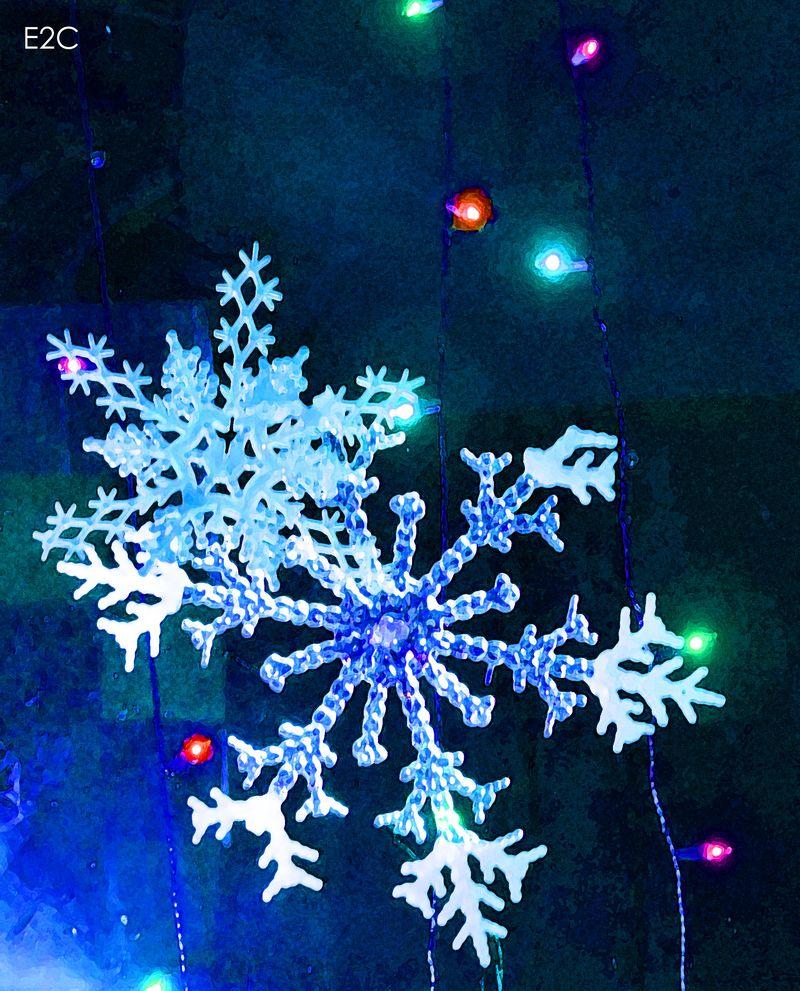 2014 snowflake
