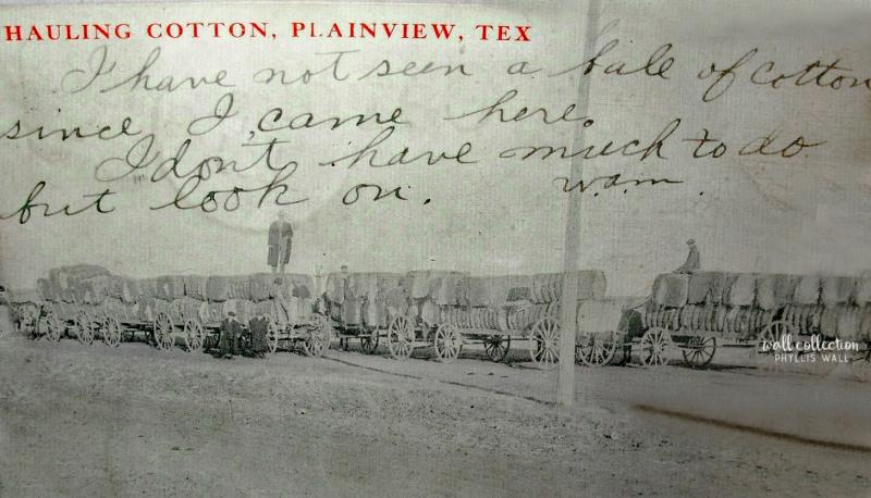 1909 Hauling Cottone